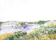 The Little Pond at Appledore Childe Hassam