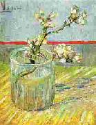 Blooming Almond Stem in a Glass Vincent Van Gogh
