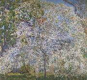 Spring,The Dogwood Tree Childe Hassam