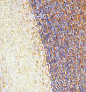 Detail of Dance Georges Seurat