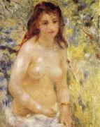 The female nude under the sun renoir