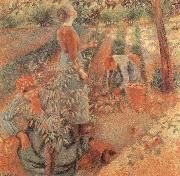 Apple picking Camille Pissarro