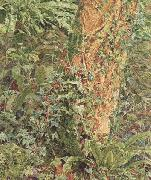 Study of an Ash Trunk (mk46) Albert Joseph Moore,ARWS