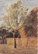 Study of a Tree John linnell