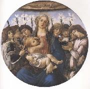 Madonna and child with eight Angels or Raczinskj Tondo Botticelli