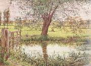 Landscape with a Gate and Watermeadow (mk46) William Bell Scott