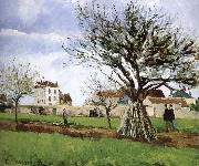 Pang map of apple Schwarz Camille Pissarro