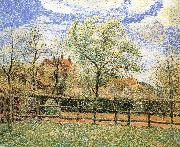 Pear trees bloom in the morning Camille Pissarro