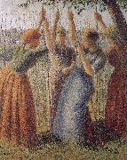 Woman under the bean frame Camille Pissarro