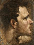 Head of a Youth Seen in Profile Domenico Beccafumi