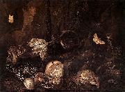 Still life with Insects and Amphibians Otto Marseus van Schrieck