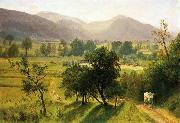 Conway Valley New Hampshire Albert Bierstadt