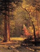 Dogwood by Albert Bierstadt Albert Bierstadt
