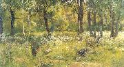 Grassy Glades of the Forest Ivan Shishkin