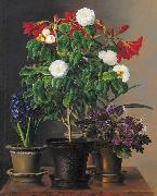 Camelias, amaryllis, hyacinth and violets in ornamental pots on a marble ledge Johan Laurentz Jensen