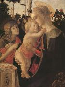 The Virgin and child with John the Baptist (mk05) Sandro Botticelli
