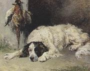 An English Setter at the end of the Day (mk37) John emms