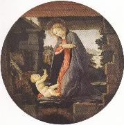 Madonna in Adoration of the Christ Child (mk36) Botticelli
