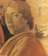 Young man in a Yellow mantle (mk36) Sandro Botticelli