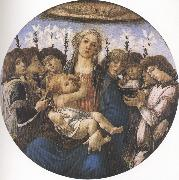 Madonna and Child with eight Angels or Raczinskj Tondo (mk36) Botticelli
