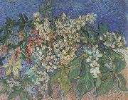 Blossoming Chestnut Branches (nn04) Vincent Van Gogh