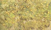 A Field of Yellow Flowers (nn04) Vincent Van Gogh