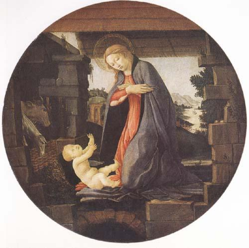 Sandro Botticelli Madonna in Adoration of the Christ Child