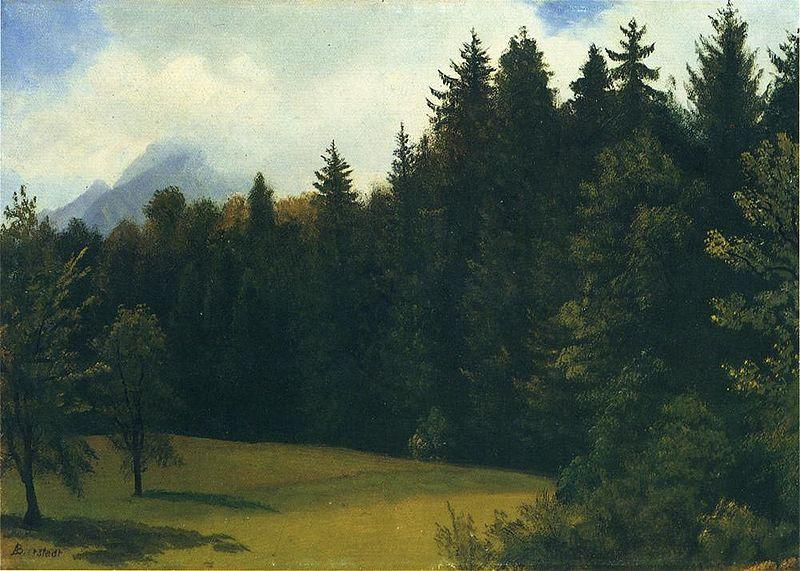 Albert Bierstadt Greater San Francisco Area (Mountain Glade and Mountain Resort)