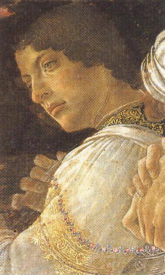 Sandro Botticelli Young kneeling Mago (mk36)