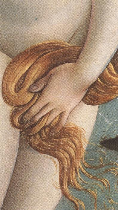 Sandro Botticelli The Birth of Venus (mk36)